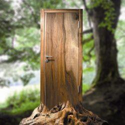 massivholztuere-wild-haberltueren.jpg